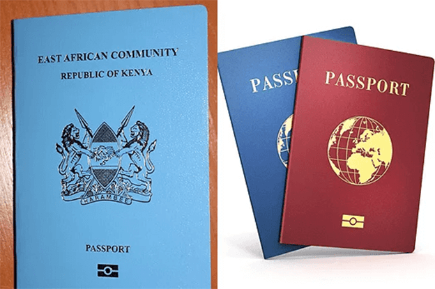 No e-passport, no visa: Foreign Affairs ministry says