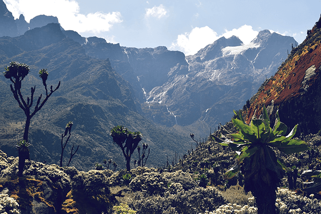 The Rwenzori Mountains - The highest and most scenic mountain range in Uganda and Africa